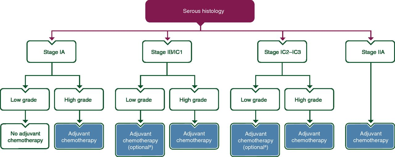 ESMO–ESGO consensus conference recommendations on ovarian cancer