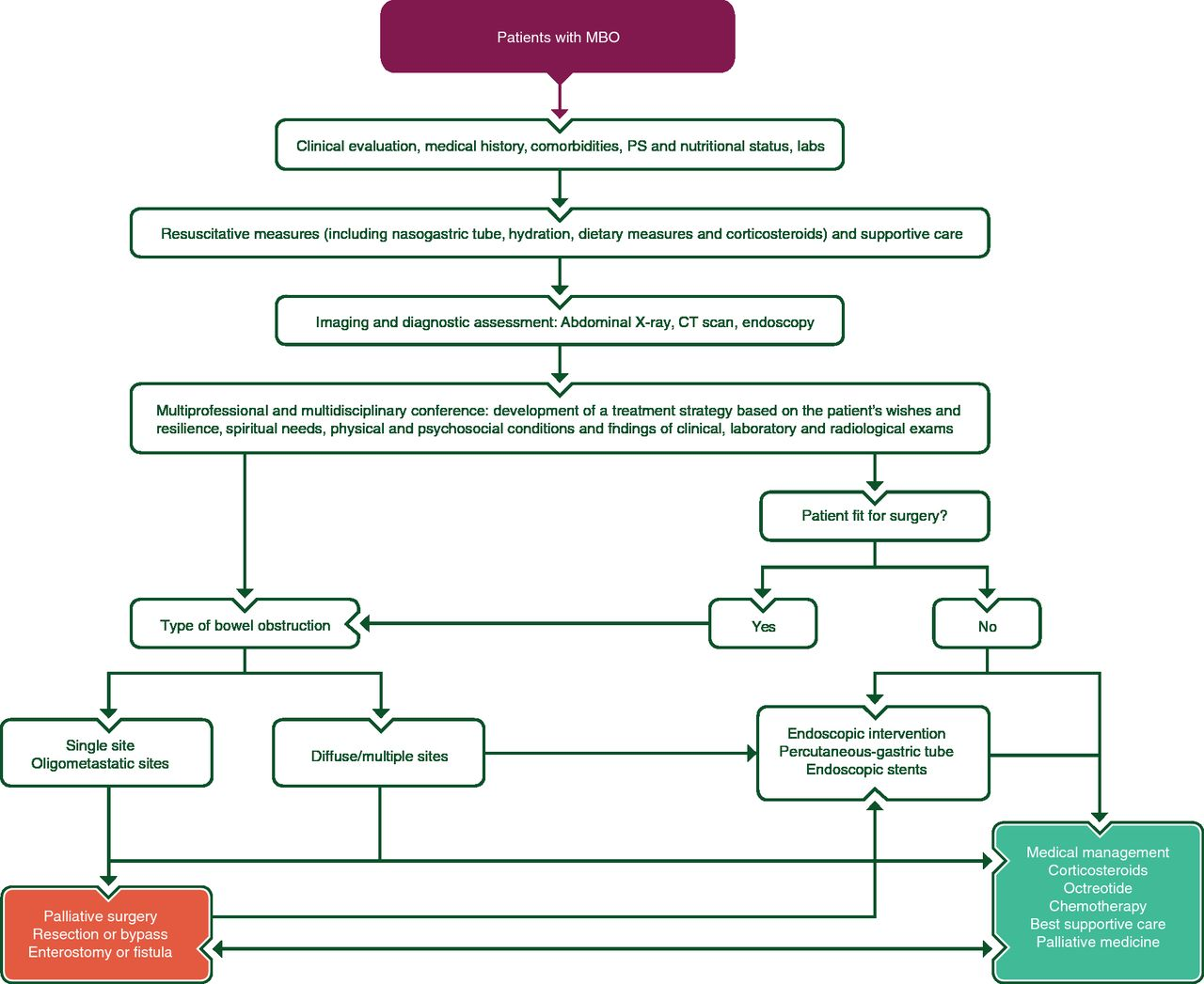 ESMO–ESGO consensus conference recommendations on ovarian