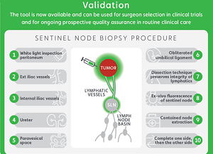 Competency Assessment Tool for SLN Dissection in Endometrial Cancer