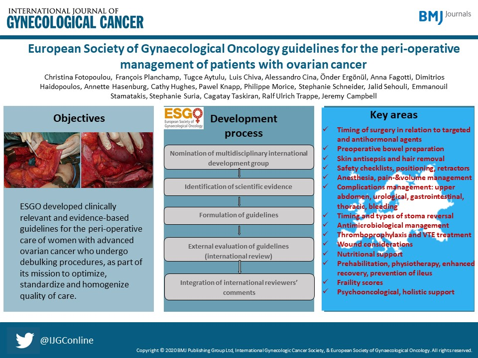 European Society of Gynaecological Oncology guidelines for the perioperative management of patients with ovarian cancer